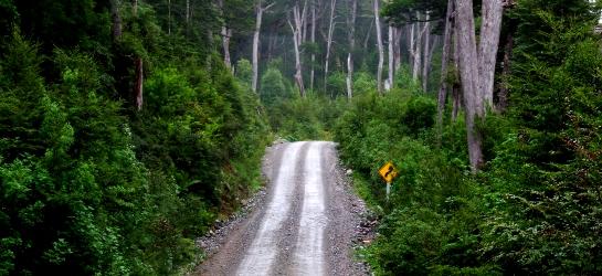 Carretera Austral, Ruta 7